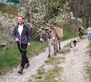 Ânes sans frontières - hikes with donkeys